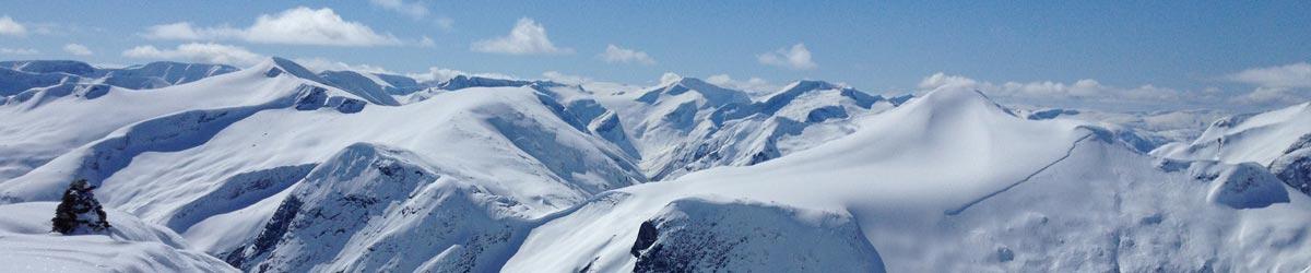 avalanche.org.nz